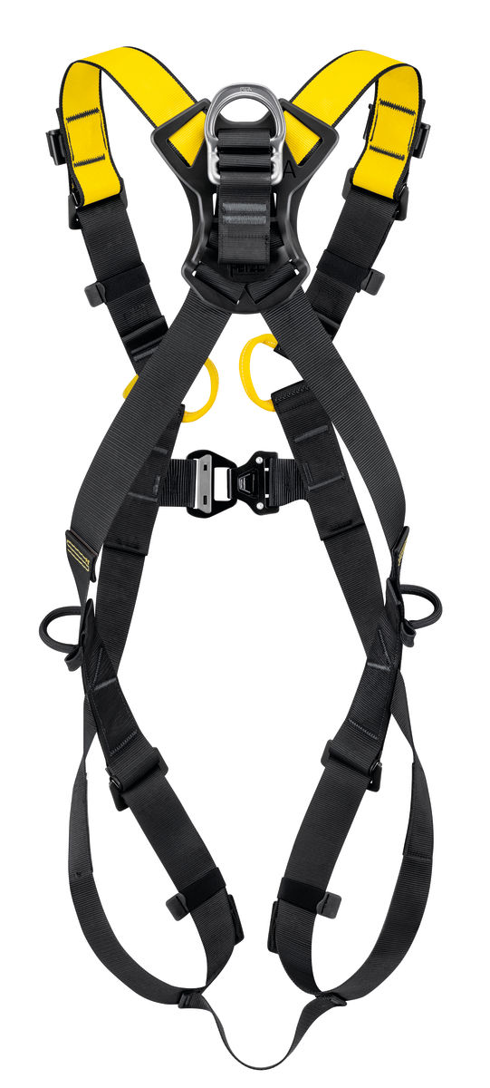 Petzl Newton International Fall Arrest harness rear view